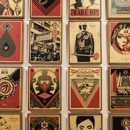 Obey Giant na Underdogs